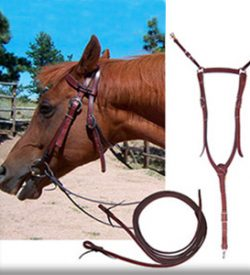 Saddle Tack