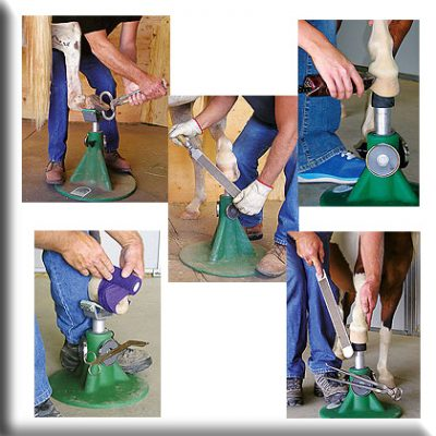 Hoofjack Farriers Stand ~Uses